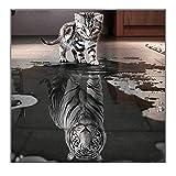 gatos tigre