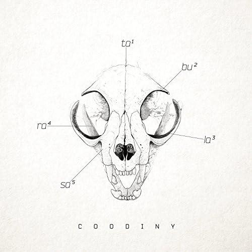 Coodiny