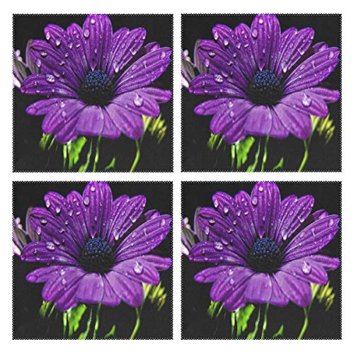 IDO Heat Resistant Placemats for Kitchen Table Mats for Dinning Room,Purple Daisy Best Washable Insulation Non Slip Placemat 12x12 inch Set of 4
