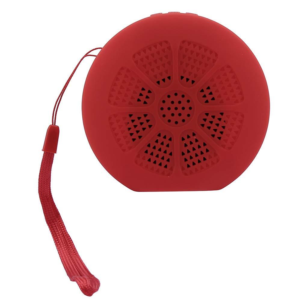 Challeng - Altavoz para Amazon Fire TV Stick, altavoz conectado, altavoz Bluetooth, altavoz Bluetooth, radio Bluetooth, altavoz Bluetooth, altavoz Bluetooth portátil, altavoz de TV, altavoz para TV RD: Amazon.es: Informática