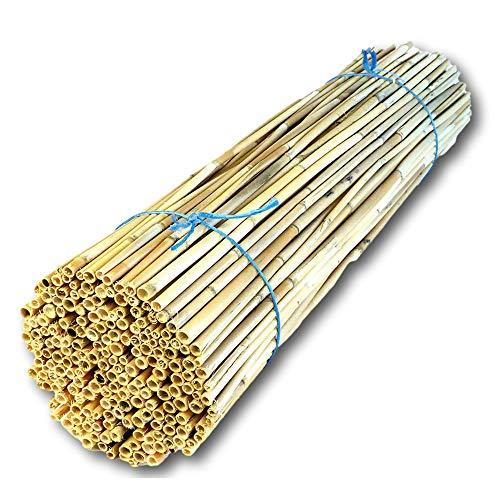 Hiss Reet® Schilfrohrhalme Premium als Insektenhotel Füllmaterial I geschält I Ideal auch als Niströhren für Wildbienen, Bienenhotel geeignet I Verschiedene Längen (L - ca. 80 cm Länge)