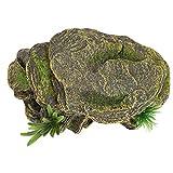 Redxiao 【𝐕𝐞𝐧𝐭𝐚 𝐑𝐞𝐠𝐚𝐥𝐨 𝐏𝐫𝐢𝐦𝐚𝒗𝐞𝐫𝐚】 Hábitat de Reptiles de Tortugas, Cuevas de escondite de Anfibios de Acuario de Acuario, Forma Agradable para Reptiles