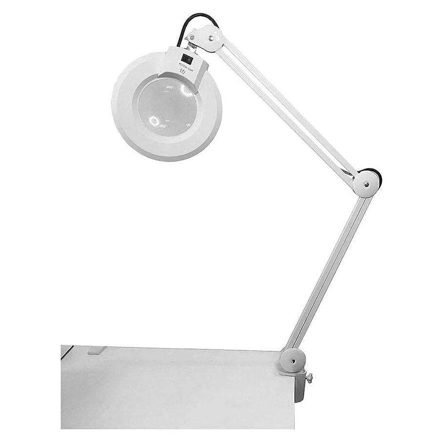 感嘆符タワーいろいろ30LED 8X虫眼鏡クランプランプ:昼光の明るい照明付きレンズ、デスク、テーブル、タスク、クラフト、ジュエリー、縫製、ワークベンチ用の調整可能なスイベルアームユーティリティライト-ホワイト