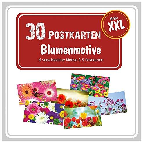 Postkartenset mit 30 XXL Postkarten, 6 verschiedene Blumen-Motive, Postkarten-Paket, Postcrossing Grußkarten Panorama. Bunte Grüße versenden!