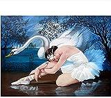 CaiHongPZZPanda Ballet Mujer y Cisne Pintura Dibujo número Set Colores para Adultos niños 40x50cm-Con Marco