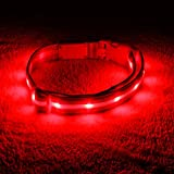 Dog LED Collar – USB Rechargeable with Water Resistant Flashing Light – Medium Red