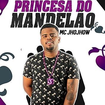 Princesa do Mandelão - Single
