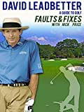 David Leadbetter: Faults and Fixes