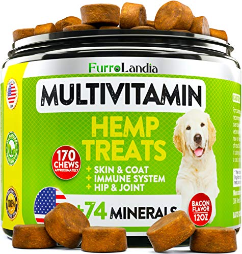 Dog Hemp Multivitamin Treats - Essential Dog Vitamins for Hip & Joint Support + Digestion, Skin & Coat, Heart, Immune Health | With Hemp Oil, Kona Berry, Green Lipped Mussel - 170 Soft Chews