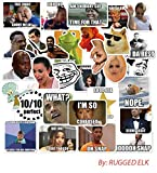 (30 Pack) Funny Internet Memes and Celebrity Vinyl Sticker Pack Stickers for Laptop, iPhone, Water Bottles, Computer, and Hydro Flask