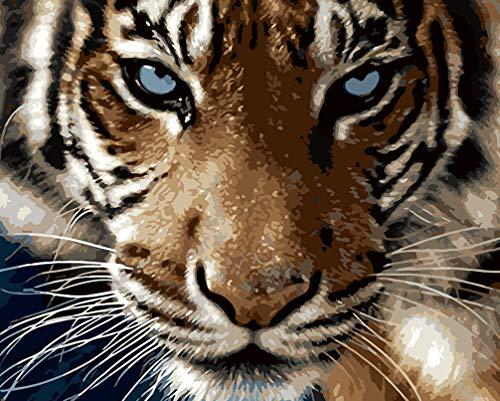 WONZOM DIY Pintura por Números para Adultos, Pintar por Numeros Kits sobre Lienzo DIY Pintura al óleo para Niños Principiantes, Tigre Feroz Animal 16 * 20 Pulgadas Sin Marco
