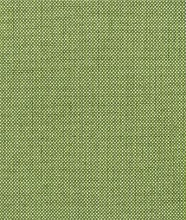 Sunbrella Spectrum Cilantro Fabric - by the Yard