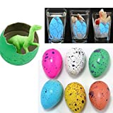 (Eggs Size: 3Cms... Growing Size Approx: 2.5 to 3.5cms) Growing Size Approx: 2.5 to 3.5cms Pack of 5+3 Free Miniature Eggs