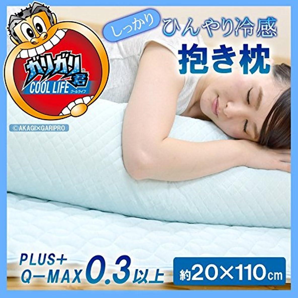引き受ける目指す有益接触冷感 抱き枕 『 ガリガリ君 PLUS+ 』【IB】(#1538399) 20×110cm