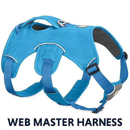 RUFFWEAR - Web Master, Multi-Use Support Dog Harness, Hiking and Trail Running,...