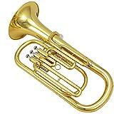 LJRnyi Vertikaler Schlüssel Bb Euphonium Baritonhorn Goldmessing Mundrohr Ausgestattet Mit Handschuhen, Taschen Beste Leistung