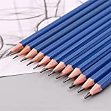 XLEIQUISHJ Estudiante 40 unids/Set Professional Sketching Dibujo Lápiz Borrador Afilador Juego de Pastel de Carbón Suministros de Arte con Funda de Transporte Class (Size : 1Set)
