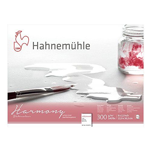 Hahnemuhle Harmony Watercolor Block Cold Pressed 9x12 Inches 12 Sheets
