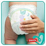Pampers Baby-Dry Pants, Gr. 6, 15+ kg, Monatsbox, 1er Pack (1 x 116 Stück) - 5