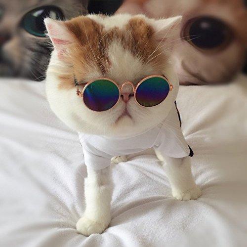 Hemore Gafas de sol para perros pequeños y gatos, gafas de sol universales para protección de ojos