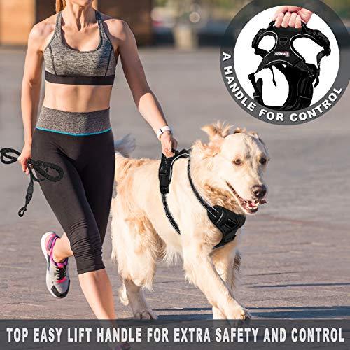BARKBAY No-Pull Dog Harness