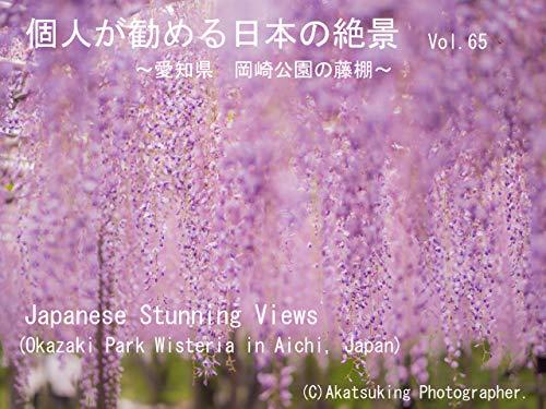 個人が勧める日本の絶景 Vol.65 ~愛知県 岡崎公園の藤棚~: Japanese Amazing Views Okazaki Park Wisteria in Aichi