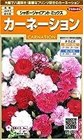 サカタのタネ 実咲花7100 カーネーションシャボージャイアントミックス 00907100