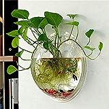Cosanter - Vasi trasparenti per fiori in acrilico, creativo, vasi da appendere, multifunzi...