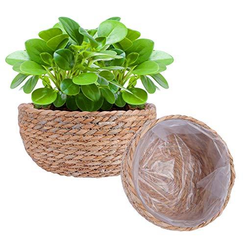 Herefun 2 Piezas Cesta Flores Tejidas, Cesta Tejida de Algas Naturales, Cesta de Plantas, Cesta de Almacenamiento Tejida para Flores, Plantas, Decoración de Interiores y Exteriores (Cesta de Planta)
