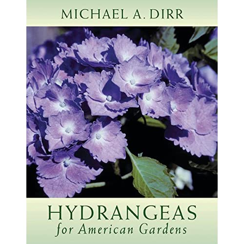 Hydrangeas For American Gardens Dirr Michael A Dirr Bonnie L