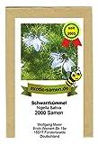 Schwarzkümmel - Bienenweide - Nigella sativum - 2000 Samen