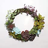 Noble House Unique Designs Succulent Wreath with Real Twig Based Back for Front Door,Home and Office, Artificial Succulent Wreath for Spring and All Seasons (Multi-Color, 16 inch)