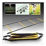 WNN-URG Agility Ladder, Football Speed Entrenamiento Kit, de Ejercicios rápido Juego de pies Taladros de, Ayuda al Deporte aparatos de Ejercicios de, for el fútbol/Baloncesto/Boxeo (10 Nudos)