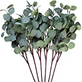 Chenguo 3 Stück Künstliche Eukalyptus-Blatt-Spray, 65...