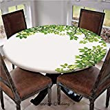 "Elastic Edged Polyester Fitted Table Cover,Broad Leaves Close up Background Garden Organic Foliage Shrubs Cells Plant Image,Fits up 40""-44"" Diameter Tables,The Ultimate Protection for Your Table,Green"