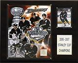 NHL Ducks 2006-07 Stanley Cup Champions Schild -