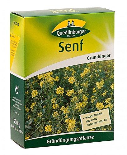 Quedlinburger 205206 Senf 500 g (Gründünger)