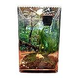 AIHOME Caja de alimentación de insectos transparente acrílico reptil terrario caja de alimentación para arañas Geckos