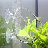 【SRrabbit】水草ポット グラスポット 水草 植木鉢 水槽 アクアリウム 取付簡単 ガラス製 (1個)