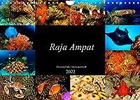 Raja Ampat - Faszinierende Unterwasserwelt (Wandkalender 2022 DIN A4 quer): Tauchen Sie ein in die faszinierende Unterwasserwelt von Raja Ampat, Papua in Indonesien. (Monatskalender, 14 Seiten )