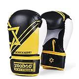 Flexzion Boxing Sparring Trainin...