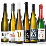 GEILE WEINE Weinpaket RIESLING (6 x 0,75l) Deutscher Weißwein von Winzern aus Rheingau, Pfalz, Saar...