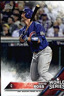 Best champion chicago cubs Reviews