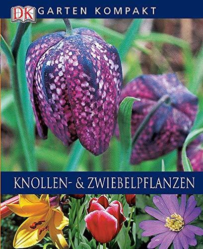 Knollen- und Zwiebelpflanzen