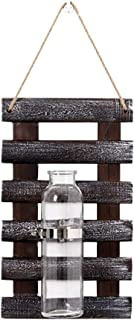 WINOMO Wooden Hanging Planters Wall-Mounted Glass Vases Bottle for Hydroponic Plants Home Office Garden Decoration