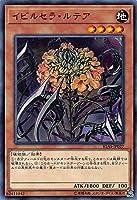遊戯王 IGAS-JP027 イビルセラ・ルテア (日本語版 ノーマル) イグニッション・アサルト