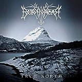 Borknagar: True North [Vinyl LP] (Vinyl)