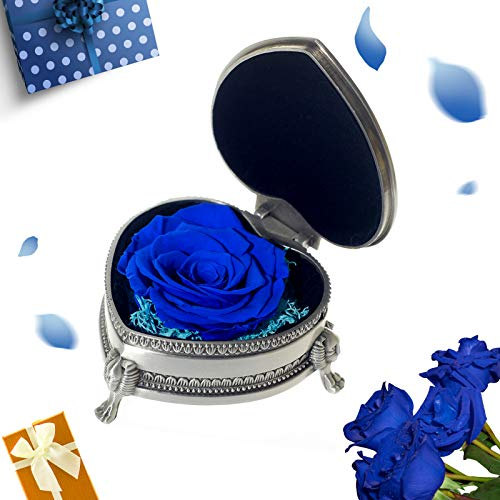 Handmade Forever Preserved Fresh Flower Eternal Real Rose with Classical Metal Box,Eternal Life Flowers for Love Ones, Gift for Valentine's Day, Christmas Eve, Anniversary,Christmas…