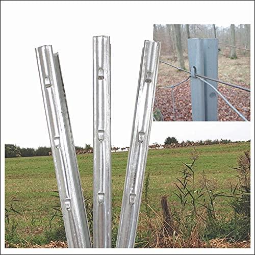 40x Z-Profil Zaunpfosten 2 m verzinkt Zaunpfähle inkl. Haken | Metallzaunpfosten für Wildzaun Weidezaun Drahtzaun Wildschutzzaun Knotengeflecht Zaun Forstprofil Forstzaun