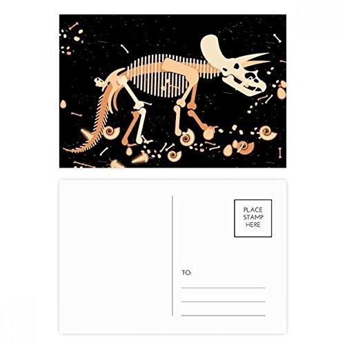 DIYthinker Knochen Knochen Miniatur-Dinosaurier-Postkarten-Set Geburtstag dankt Karte Mailing Side 20pcs 5.7 Zoll x 3.8 Zoll Mehrfarbig